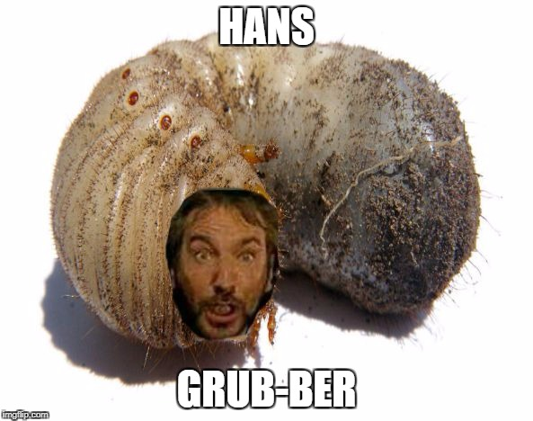 HANS GRUB-BER | image tagged in hans grub-ber | made w/ Imgflip meme maker