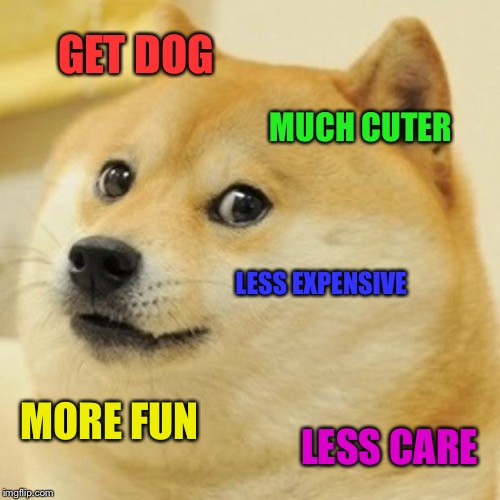 Doge Meme | GET DOG MUCH CUTER LESS EXPENSIVE MORE FUN LESS CARE | image tagged in memes,doge | made w/ Imgflip meme maker