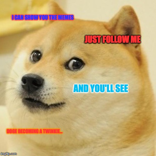 Doge Meme | I CAN SHOW YOU THE MEMES JUST FOLLOW ME AND YOU'LL SEE DOGE BECOMING A TWINKIE... | image tagged in memes,doge | made w/ Imgflip meme maker