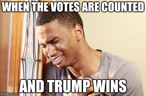 WHEN THE VOTES ARE COUNTED AND TRUMP WINS | image tagged in crying guy | made w/ Imgflip meme maker
