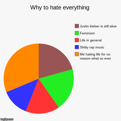 Why to hate everything | Me hating life for no reason what so ever, Shitty rap music, Life in general , Feminism , Justin bieber is still al | image tagged in funny,pie charts | made w/ Imgflip pie chart maker