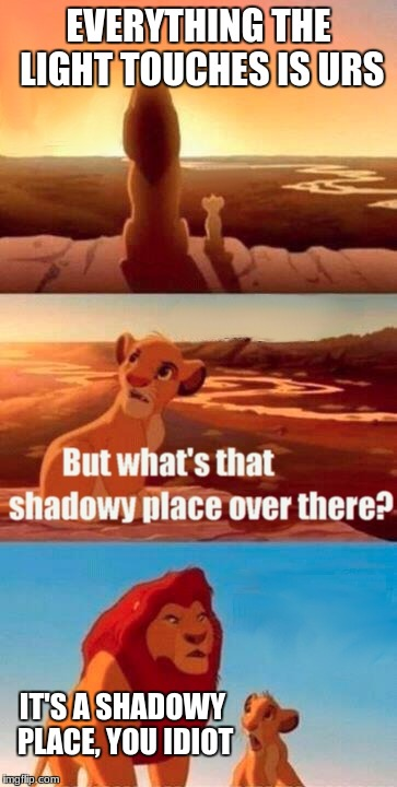 Simba Shadowy Place Meme | EVERYTHING THE LIGHT TOUCHES IS URS IT'S A SHADOWY PLACE, YOU IDIOT | image tagged in memes,simba shadowy place | made w/ Imgflip meme maker