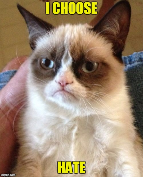 Grumpy Cat Meme | I CHOOSE HATE | image tagged in memes,grumpy cat | made w/ Imgflip meme maker