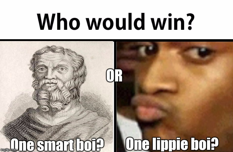 Just learned about Herodotus, and saw this image. I couldn't help but make this meme | One smart boi? One lippie boi? OR | image tagged in memes,who would win,slowstack | made w/ Imgflip meme maker