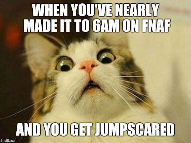 Scared Cat Meme | WHEN YOU'VE NEARLY MADE IT TO 6AM ON FNAF AND YOU GET JUMPSCARED | image tagged in memes,scared cat | made w/ Imgflip meme maker