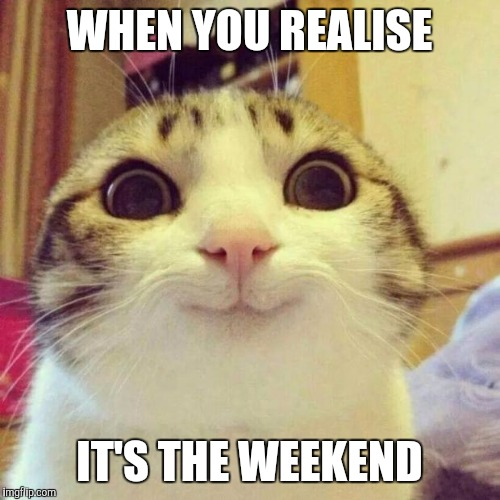 Smiling Cat Meme | WHEN YOU REALISE IT'S THE WEEKEND | image tagged in memes,smiling cat | made w/ Imgflip meme maker