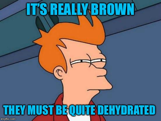 Futurama Fry Meme | IT'S REALLY BROWN THEY MUST BE QUITE DEHYDRATED | image tagged in memes,futurama fry | made w/ Imgflip meme maker