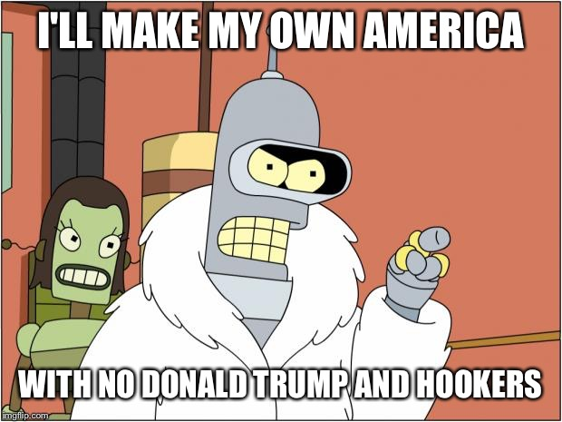 Bender Meme | I'LL MAKE MY OWN AMERICA WITH NO DONALD TRUMP AND HOOKERS | image tagged in memes,bender | made w/ Imgflip meme maker