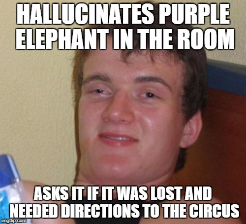 10 Guy Meme | HALLUCINATES PURPLE ELEPHANT IN THE ROOM ASKS IT IF IT WAS LOST AND NEEDED DIRECTIONS TO THE CIRCUS | image tagged in memes,10 guy | made w/ Imgflip meme maker