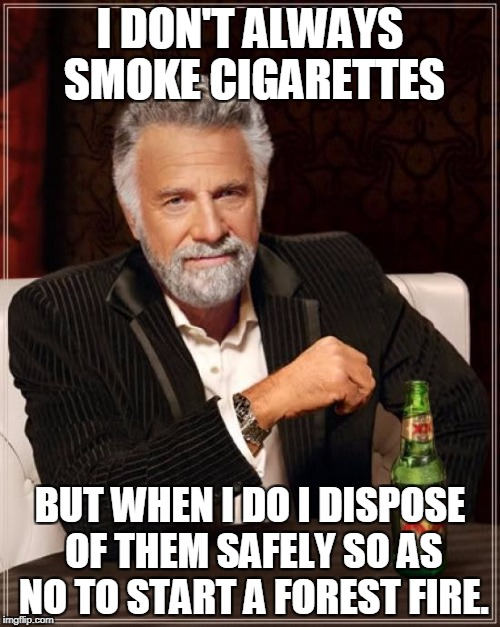 The Most Interesting Man In The World Meme | I DON'T ALWAYS SMOKE CIGARETTES BUT WHEN I DO I DISPOSE OF THEM SAFELY SO AS NO TO START A FOREST FIRE. | image tagged in memes,the most interesting man in the world | made w/ Imgflip meme maker