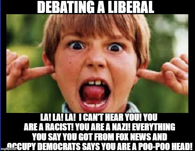 DEBATING A LIBERAL; LA! LA! LA!  I CAN'T HEAR YOU! YOU ARE A RACIST! YOU ARE A NAZI! EVERYTHING YOU SAY YOU GOT FROM FOX NEWS AND OCCUPY DEMOCRATS SAYS YOU ARE A POO-POO HEAD! | image tagged in memes,liberal logic,democratic party,stupid liberals,triggered liberal,debate | made w/ Imgflip meme maker