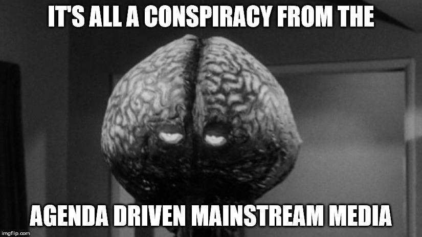 Brainy Brian | IT'S ALL A CONSPIRACY FROM THE AGENDA DRIVEN MAINSTREAM MEDIA | image tagged in brainy brian | made w/ Imgflip meme maker