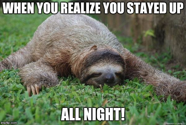 Sleeping sloth | WHEN YOU REALIZE YOU STAYED UP ALL NIGHT! | image tagged in sleeping sloth | made w/ Imgflip meme maker