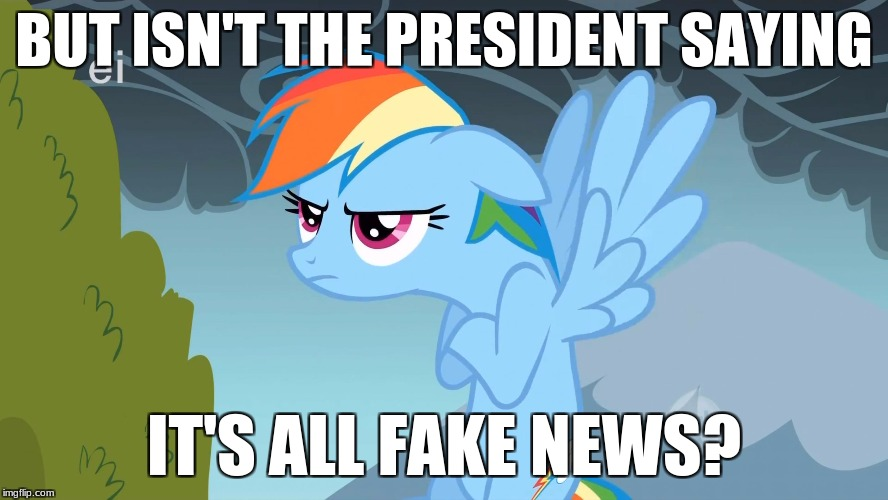 Grumpy Pony | BUT ISN'T THE PRESIDENT SAYING IT'S ALL FAKE NEWS? | image tagged in grumpy pony | made w/ Imgflip meme maker