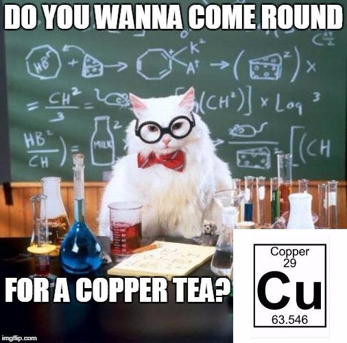 Chemistry Cat | DO YOU WANNA COME ROUND FOR A COPPER TEA? | image tagged in memes,chemistry cat,funny,bad pun,jokes,sceince | made w/ Imgflip meme maker