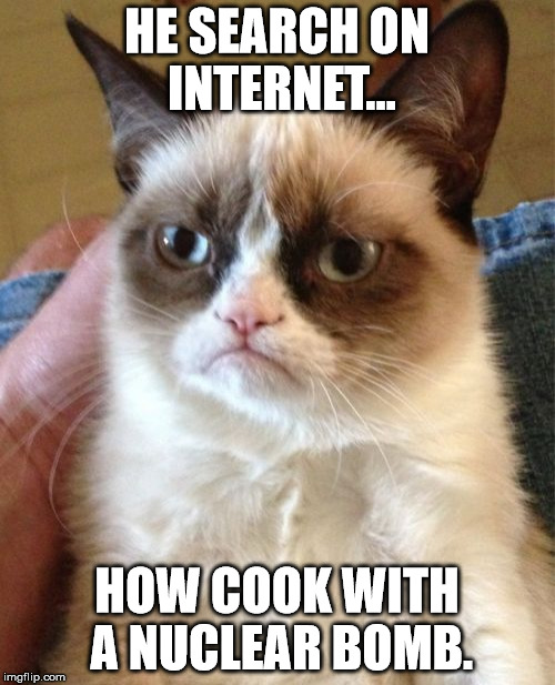 Grumpy Cat Meme | HE SEARCH ON INTERNET... HOW COOK WITH A NUCLEAR BOMB. | image tagged in memes,grumpy cat | made w/ Imgflip meme maker