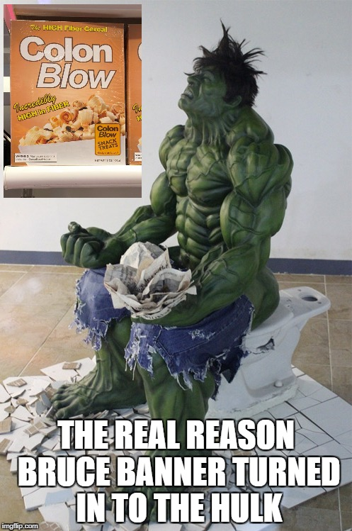fiber diet, oh hell no | THE REAL REASON BRUCE BANNER TURNED IN TO THE HULK | image tagged in hulk,diet,poop | made w/ Imgflip meme maker
