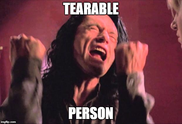 The Room | TEARABLE PERSON | image tagged in the room | made w/ Imgflip meme maker