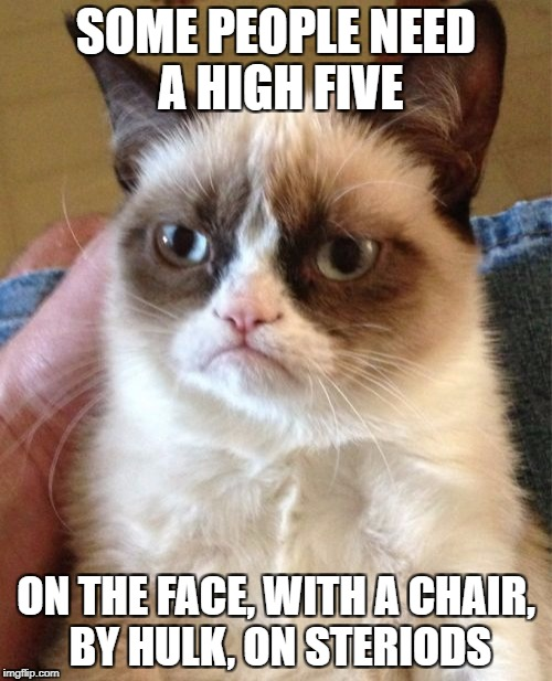 multiple times | SOME PEOPLE NEED A HIGH FIVE ON THE FACE, WITH A CHAIR, BY HULK, ON STERIODS | image tagged in memes,grumpy cat,true,funny,ssby | made w/ Imgflip meme maker