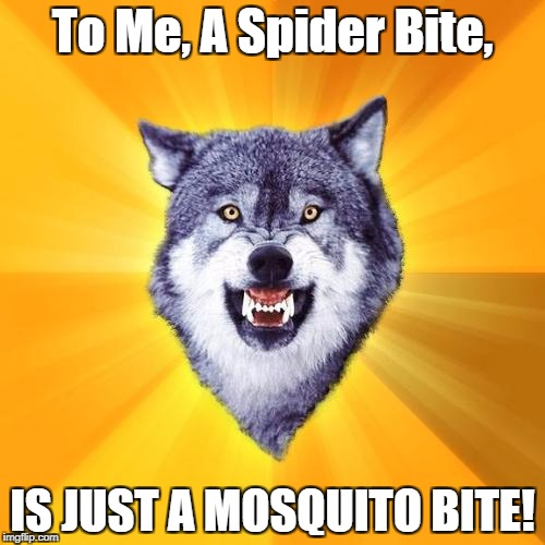 Bump It! | To Me, A Spider Bite, IS JUST A MOSQUITO BITE! | image tagged in memes,courage wolf | made w/ Imgflip meme maker