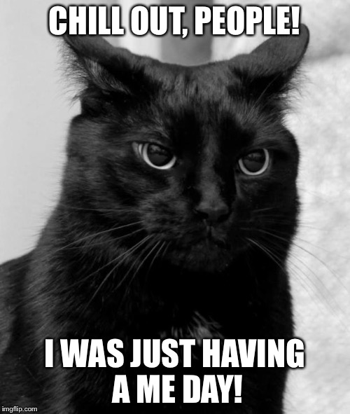 Black cat pissed | CHILL OUT, PEOPLE! I WAS JUST HAVING A ME DAY! | image tagged in black cat pissed | made w/ Imgflip meme maker