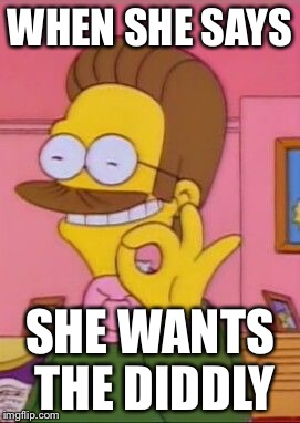 Ned flanders | WHEN SHE SAYS SHE WANTS THE DIDDLY | image tagged in ned flanders | made w/ Imgflip meme maker