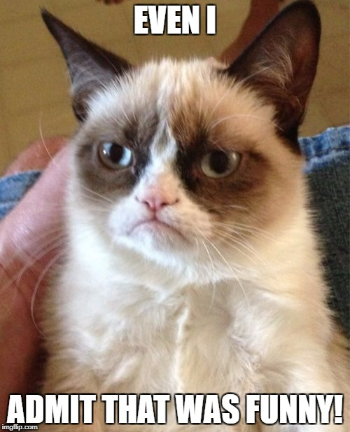 Grumpy Cat Meme | EVEN I ADMIT THAT WAS FUNNY! | image tagged in memes,grumpy cat | made w/ Imgflip meme maker