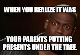 Kevin Hart The Hell Meme | WHEN YOU REALIZE IT WAS YOUR PARENTS PUTTING PRESENTS UNDER THE TREE. | image tagged in memes,kevin hart the hell | made w/ Imgflip meme maker