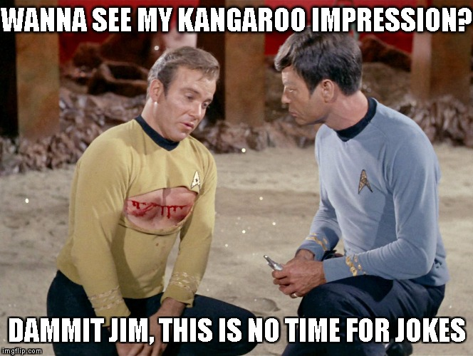 No time for jokes! | WANNA SEE MY KANGAROO IMPRESSION? DAMMIT JIM, THIS IS NO TIME FOR JOKES | image tagged in no time for jokes | made w/ Imgflip meme maker