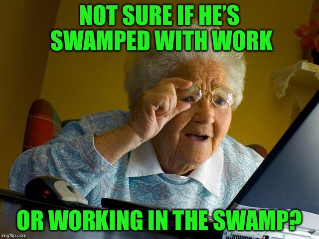 Grandma Finds The Internet Meme | NOT SURE IF HE'S SWAMPED WITH WORK OR WORKING IN THE SWAMP? | image tagged in memes,grandma finds the internet | made w/ Imgflip meme maker