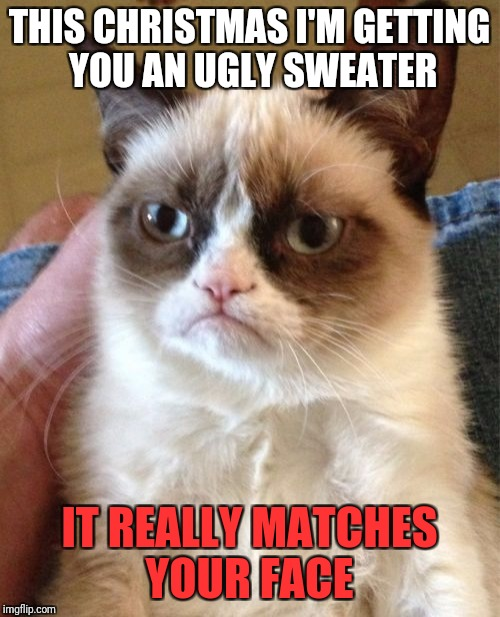 A very grumpy Christmas gift | THIS CHRISTMAS I'M GETTING YOU AN UGLY SWEATER IT REALLY MATCHES YOUR FACE | image tagged in memes,grumpy cat,christmas | made w/ Imgflip meme maker