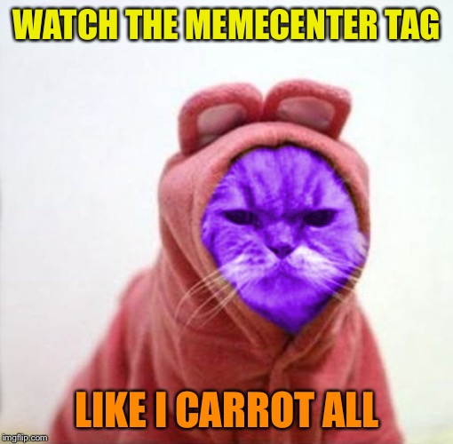 Sullen RayCat | WATCH THE MEMECENTER TAG LIKE I CARROT ALL | image tagged in sullen raycat | made w/ Imgflip meme maker