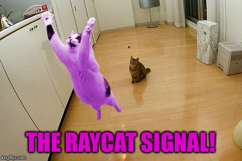 RayCat save the world | THE RAYCAT SIGNAL! | image tagged in raycat save the world | made w/ Imgflip meme maker