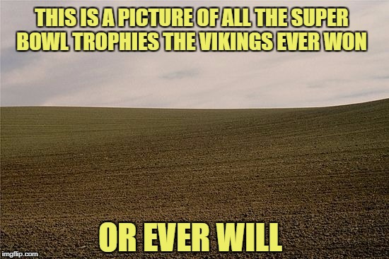 OR EVER WILL THIS IS A PICTURE OF ALL THE SUPER BOWL TROPHIES THE VIKINGS EVER WON | made w/ Imgflip meme maker