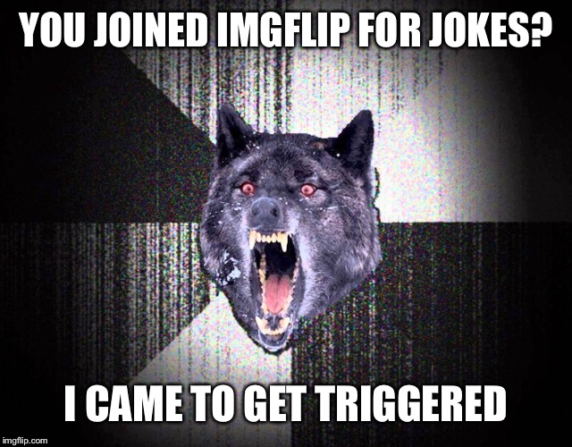 Insanity wolf joins imgflip  | YOU JOINED IMGFLIP FOR JOKES? I CAME TO GET TRIGGERED | image tagged in insanity wolf,triggered,imgflip | made w/ Imgflip meme maker