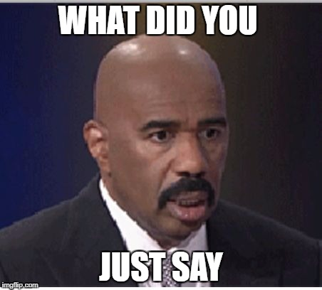 Steve Harvey | WHAT DID YOU JUST SAY | image tagged in steve harvey | made w/ Imgflip meme maker