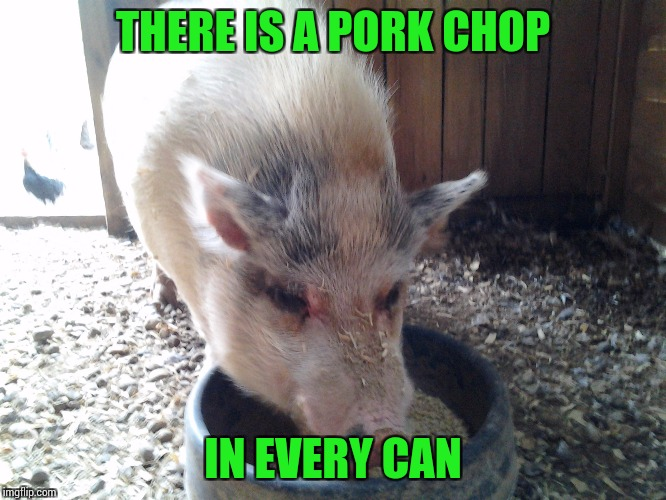 THERE IS A PORK CHOP IN EVERY CAN | made w/ Imgflip meme maker
