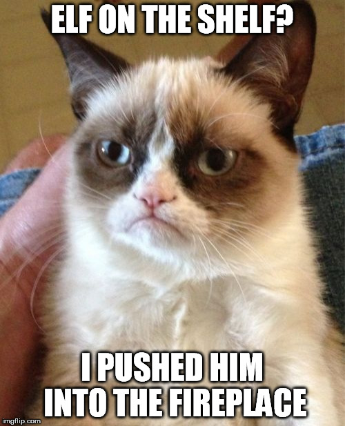 Grumpy Cat Meme | ELF ON THE SHELF? I PUSHED HIM INTO THE FIREPLACE | image tagged in memes,grumpy cat | made w/ Imgflip meme maker