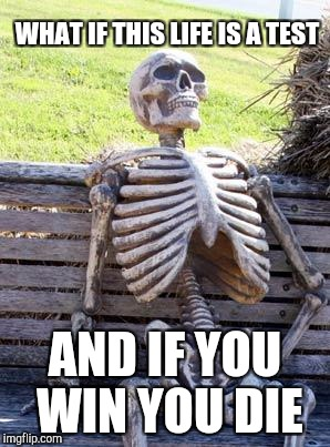 Waiting Skeleton Meme | WHAT IF THIS LIFE IS A TEST AND IF YOU WIN YOU DIE | image tagged in memes,waiting skeleton | made w/ Imgflip meme maker