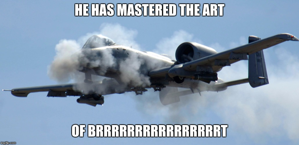the art of brrt  | HE HAS MASTERED THE ART OF BRRRRRRRRRRRRRRRRT | image tagged in memes,warthog,brrrt | made w/ Imgflip meme maker