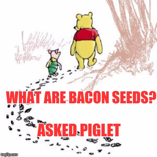 WHAT ARE BACON SEEDS? ASKED PIGLET | made w/ Imgflip meme maker