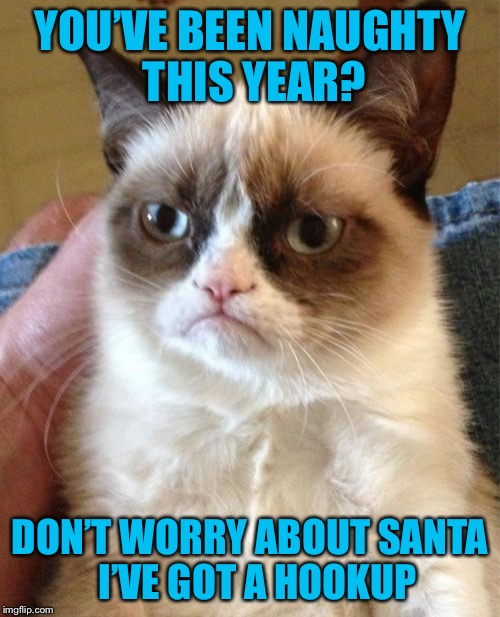 Grumpy Cat Meme | YOU'VE BEEN NAUGHTY THIS YEAR? DON'T WORRY ABOUT SANTA  I'VE GOT A HOOKUP | image tagged in memes,grumpy cat,americanpenguin | made w/ Imgflip meme maker