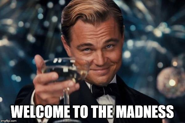 Leonardo Dicaprio Cheers Meme | WELCOME TO THE MADNESS | image tagged in memes,leonardo dicaprio cheers | made w/ Imgflip meme maker