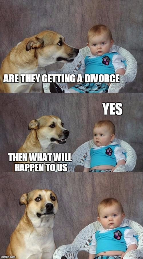 Dad Joke Dog Meme | ARE THEY GETTING A DIVORCE THEN WHAT WILL HAPPEN TO US YES | image tagged in memes,dad joke dog | made w/ Imgflip meme maker