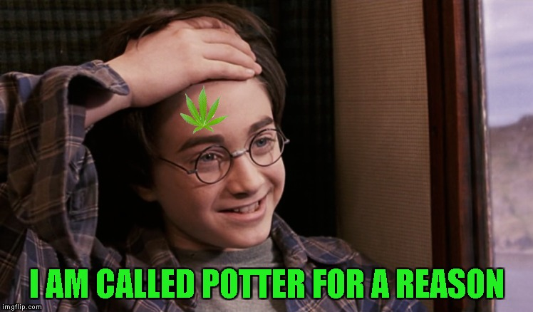 Now we need to find out the meanings behind Hermione Granger,Ron Weasley,Severus Snape and Aberforth Dumbedore!          | I AM CALLED POTTER FOR A REASON | image tagged in memes,harry potter,weed,marijuana,pot,powermetalhead | made w/ Imgflip meme maker