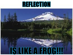 REFLECTION IS LIKE A FROG!!! | image tagged in reflection of light | made w/ Imgflip meme maker