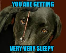 YOU ARE GETTING VERY VERY SLEEPY | made w/ Imgflip meme maker