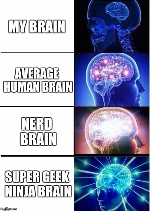 Expanding Brain Meme | MY BRAIN AVERAGE HUMAN BRAIN NERD BRAIN SUPER GEEK NINJA BRAIN | image tagged in memes,expanding brain | made w/ Imgflip meme maker