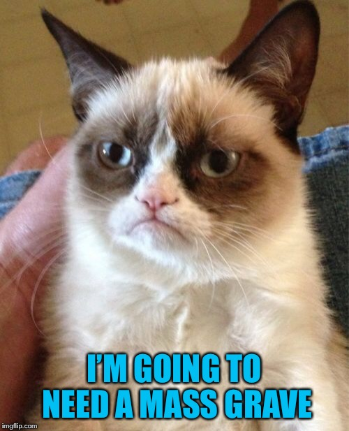 Grumpy Cat Meme | I'M GOING TO NEED A MASS GRAVE | image tagged in memes,grumpy cat | made w/ Imgflip meme maker