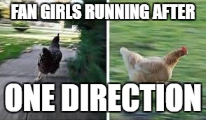 running chicken | FAN GIRLS RUNNING AFTER ONE DIRECTION | image tagged in running chicken | made w/ Imgflip meme maker